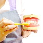 子どもが虫歯にならないために知っておきたいこと(2)ー歯みがきはいつから?どんな風に?