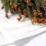 子どもの花粉症:季節性アレルギー性鼻炎と通年性アレルギー性鼻炎