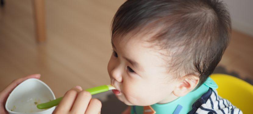 離乳食の量と回数の考え方